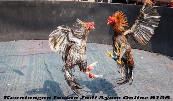 Keuntungan Instan Judi Ayam Online S128